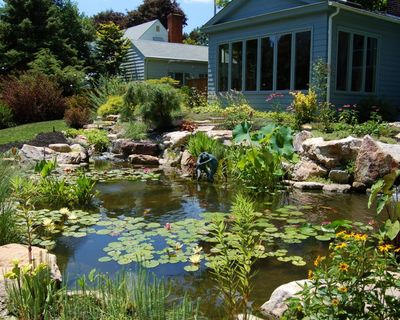 Across the pond aquascapes pa pond design installation for Maintaining a garden pond