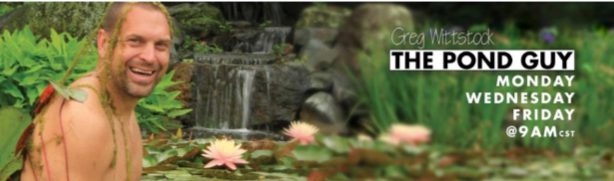 Pond Design, Installation & Maintenance Services
